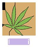 Cannabis03
